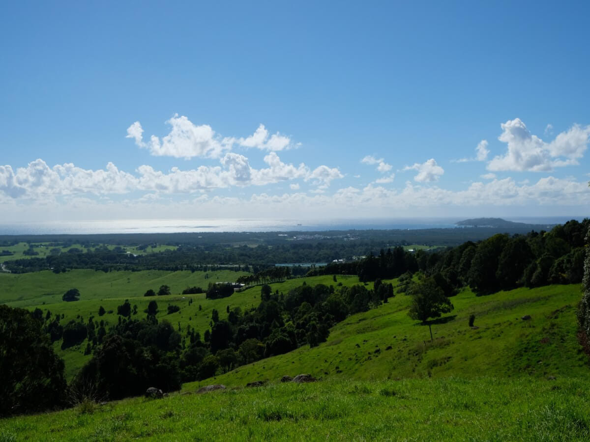 マカデミアナッツの原産地はハワイではなくオーストラリアです