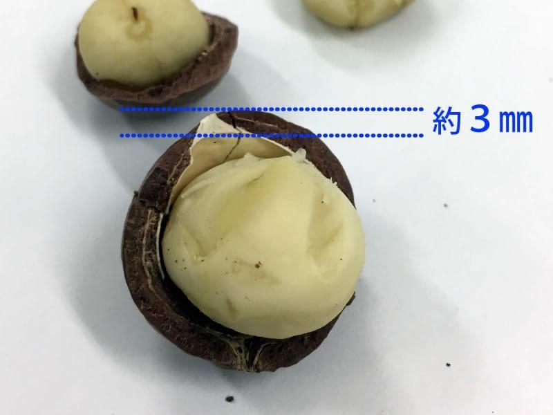 マカデミアナッツ マカダミアナッツ オーストラリア 産地 原産国 ハワイ 実 殻 割る 固い 硬い